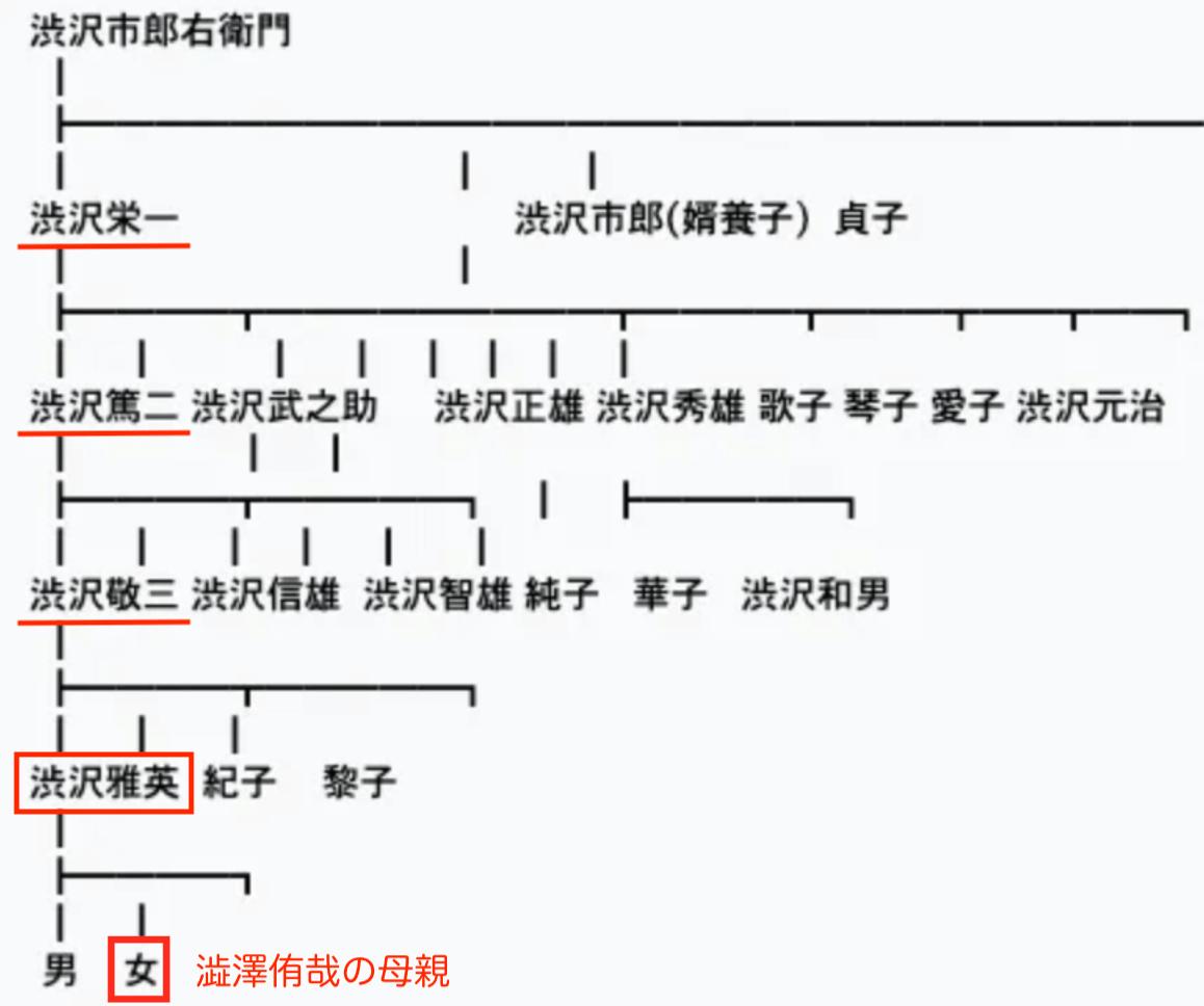 渋沢栄一,家系図