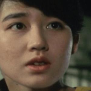 森口瑤子「男はつらいよ」