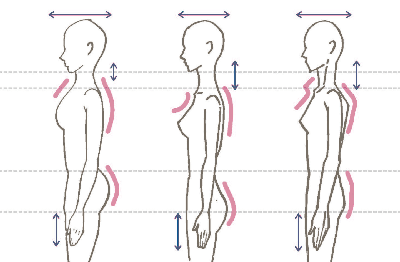 骨格診断・骨格タイプ(横)