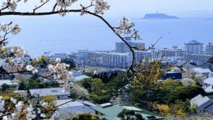 神奈川県三浦郡葉山町の写真